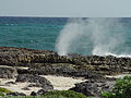 Blow Holes Cozumel (6758201507).jpg