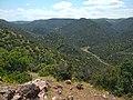 Bouachouch forest. Ait mimoun. Khemisset 8.jpg