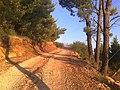 Brela, Croatia - panoramio.jpg