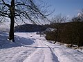 Bridle path in snow - geograph.org.uk - 1151776.jpg