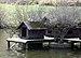 Brilon, Kurpark, Bruthäuschen für Wasservögel im Teich.jpg