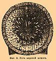 Brockhaus and Efron Encyclopedic Dictionary b32 835-2.jpg