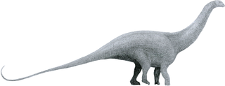 The Brontosaurus. This image is Tom Parker's, and it belongs to him.
