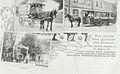 Buchholz Postkarte 01.jpg