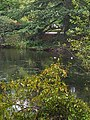 Buckingham Palace gardens 2 - 51377683448.jpg