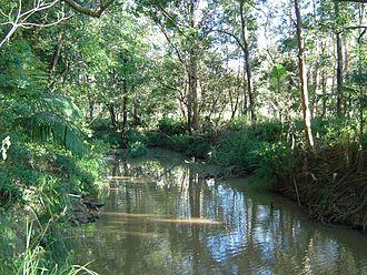 Bulimba Creek - Bulimba Creek at Mansfield, 2014