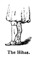 Burton Hibaz illustration.PNG