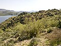 Butcher Jones Trail - Mt. Pinter Loop Trail, Saguaro Lake - panoramio (159).jpg