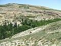 CECİMLİ - panoramio.jpg
