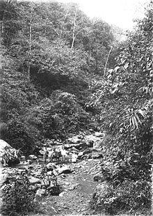 Sungai Sariwani