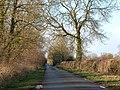 Calias Lane (2) - geograph.org.uk - 1130534.jpg