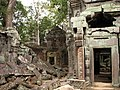 Cambodia 08 - 081 - Ta Prohm (3227691697).jpg
