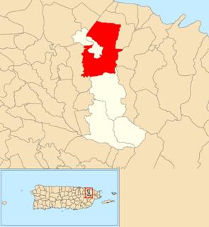 Canóvanas, Canóvanas, Puerto Rico Barrio of Puerto Rico