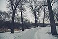Cannon Falls City Trail, Riverside Park, Cannon Falls (15886460213).jpg