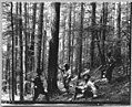 Cedar River Watershed, 1911 (36952091370).jpg