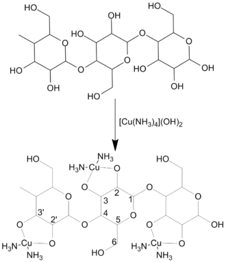 Matthias Eduard Schweizer - Cellulose dissolution in tetraaminecopper(II) hydroxide