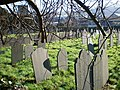 Cemetery. - geograph.org.uk - 328254.jpg