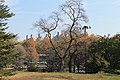 Central Park South - panoramio (15).jpg