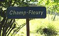 Champ-Fleury002.jpg
