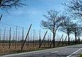 Champ de Houblons - panoramio.jpg