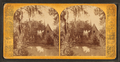 Chapel, Magnolia Cemetery, Charleston, S.C, from Robert N. Dennis collection of stereoscopic views.png