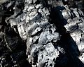 Charcoal-at-Campfire-DSC 3206w.jpg