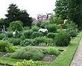 Chelsea physic garden.jpg