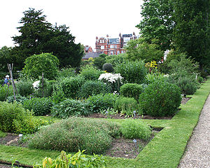 Chelsea Physic Garden - The garden in summer 2006.