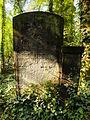 Chenstochov ------- Jewish Cemetery of Czestochowa ------- 154.JPG