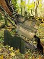 Chenstochov ------- Jewish Cemetery of Czestochowa ------- 197.JPG