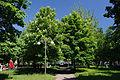 Cherkasy Nadia Park 01.JPG