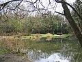 Chesham Bois Pond - geograph.org.uk - 751149.jpg
