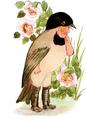 Chickadee-Bird Children-0036-22.png