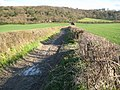 Chinnor, Bridleway to the Ridgeway and Chinnor Hill - geograph.org.uk - 750759.jpg