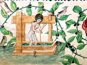 Christ in the winepress - Christ in the Winepress, a rare example with green grapes for white wine, c. 1490