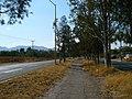 Ciclovía antigua carretera a Calvillo - panoramio.jpg