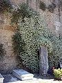 Cimiterio ebraico di pisa 2014 c.jpg