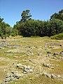 Citânia da Raposeira - Mangualde - Portugal (2875914090).jpg