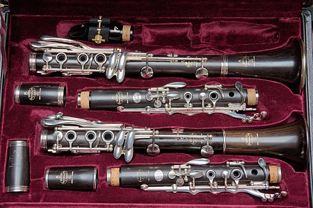 Two clarinets in their case