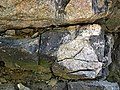 Clast-rich impact pseudotachylite (Sudbury Breccia, Paleoproterozoic, 1.85 Ga; Crab Lake South roadcut, south-southeast of Cartier, Ontario, Canada) 7 (46818331105).jpg