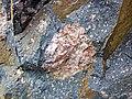 Clast-rich impact pseudotachylite (Sudbury Breccia, Paleoproterozoic, 1.85 Ga; Windy Lake Northwest roadcut, Sudbury Impact Structure, Ontario, Canada) 40 (40773282363).jpg