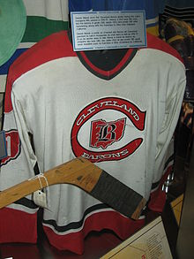 66c15743c History edit . 1976–77 Cleveland Barons home jersey at the Hockey ...