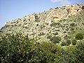 Cliffs in Oren Creek, Mt. Carmel - panoramio (1).jpg
