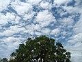 Clouds over Madhurawada1.JPG