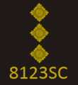 CoLP New Rank Insignia - Special Chief Inspector.png