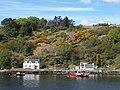 Coast near Port Askaig - geograph.org.uk - 1854419.jpg