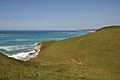 Coast path DSC 8914.jpg