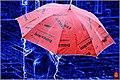 Colors In The Rain (65793665).jpeg