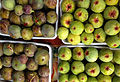 Common fig - Ficus carica - İncir 2.JPG