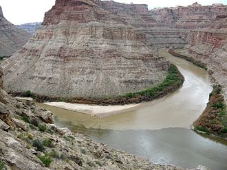 Green River (Colorado River tributary) - The confluence of the Green River (upper right) and the Colorado (lower right)